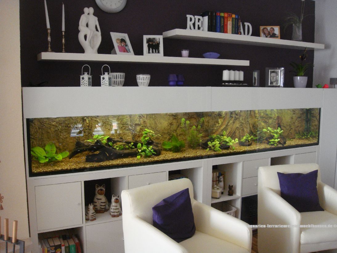 aquarien terrarienverein m hlhausen. Black Bedroom Furniture Sets. Home Design Ideas